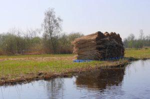 Gesneden riet in Giethoorn